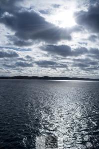 Westpoint Island,The falklands