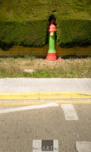 Bright fire hydrants