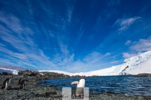 Another sunny morning in the Antarctic