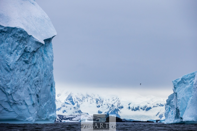 Giant icebergs in front of a Giant Continent